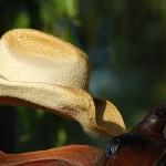 My Hat On My Saddle