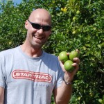 Picking Green Lemons In Clermont