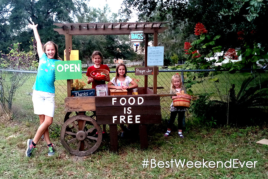 #FoodIsFree Cart Brooksville FL