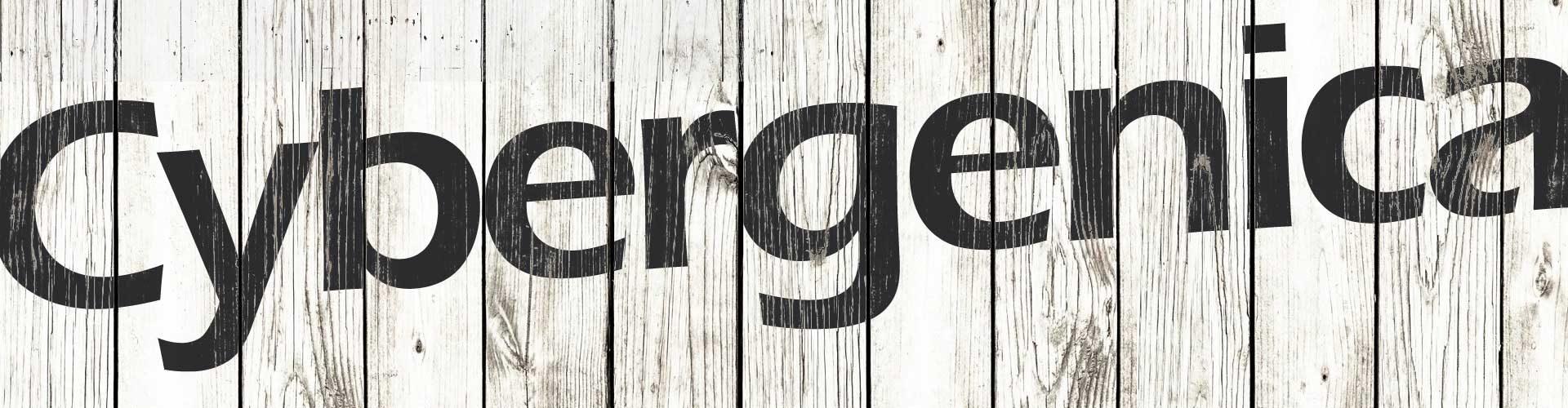 The Cybergenica Blog